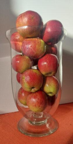 Voici une belle coupe de pommes Jonathan !